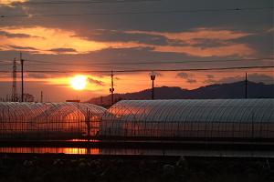 大和盆地の日没