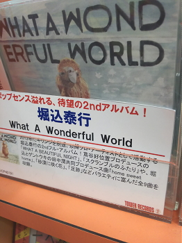 What a wonderful world/堀込泰行